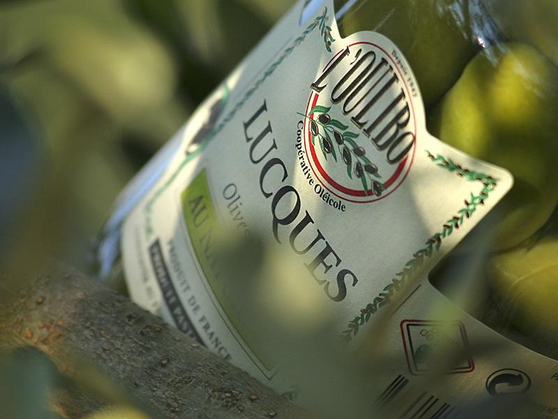 Olives de la coopérative l'Oulibo