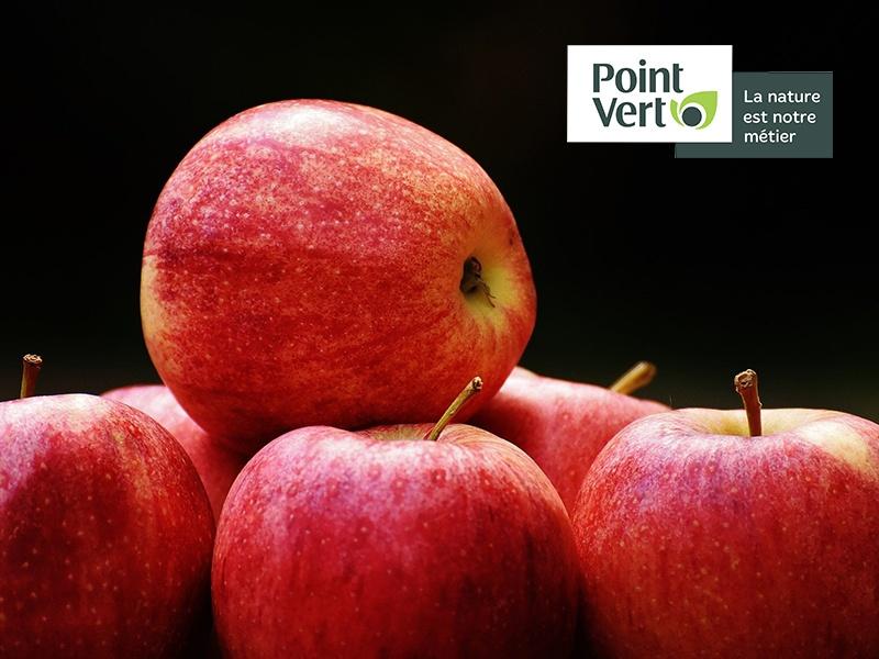 Pommes chez Point Vert